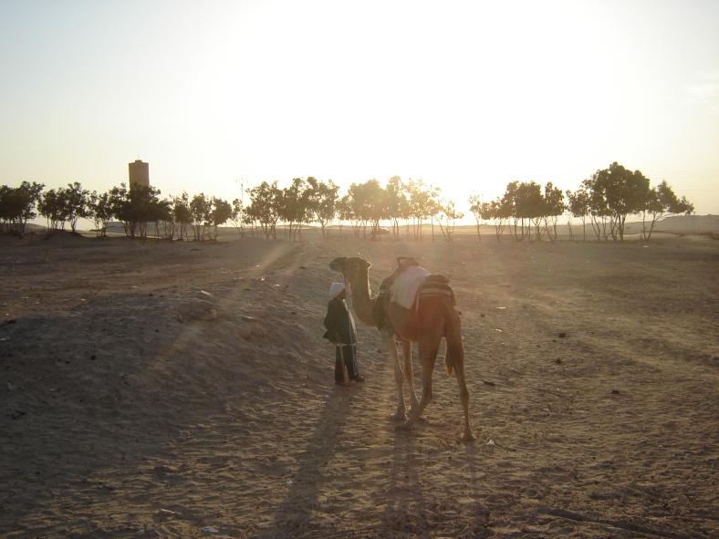 Tunisia03