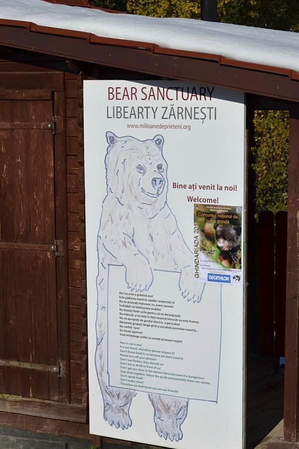 bear sanctuary01